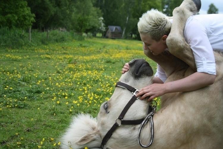 regular - equestrian. - ck__pilot   ello