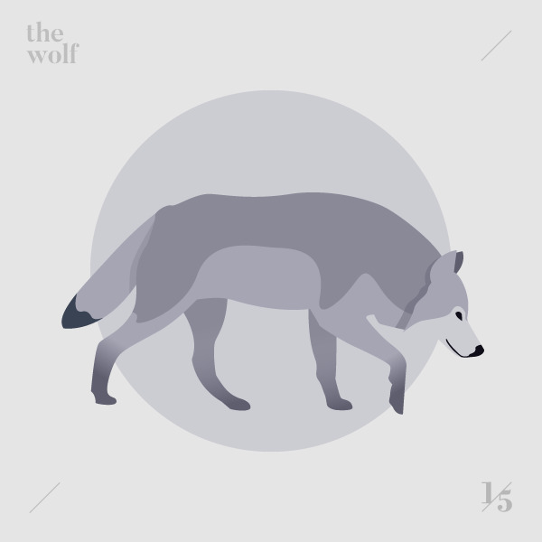 wolf — Il lupo Submitted - illustration - un_quinto | ello