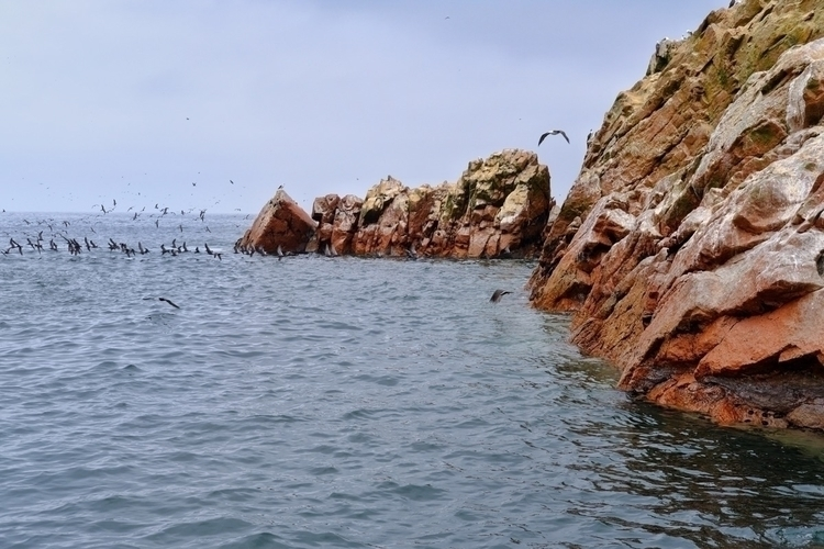 Die Islas ballestas vor Paracas - weltfarben   ello