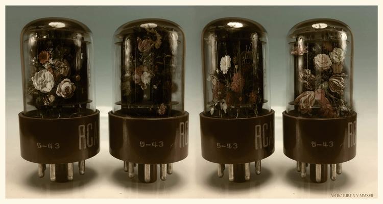 Vacuum Bulbs - collage#flowers#vacuumbulbs#distressed#journal#ephemera - astroturf | ello