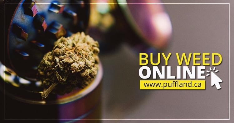 Buy Weed online Canada form 1 m - pufflandcanada   ello