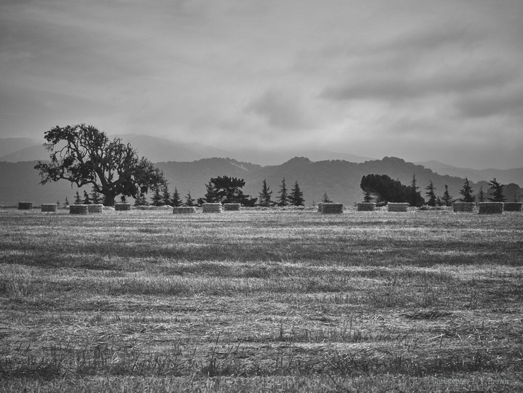 lands WebSite - monochrome, Landscapes - tychobrown | ello