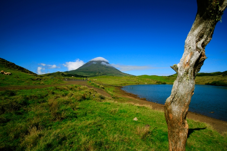 Pico, Azores, sept. 2017 - nestje   ello