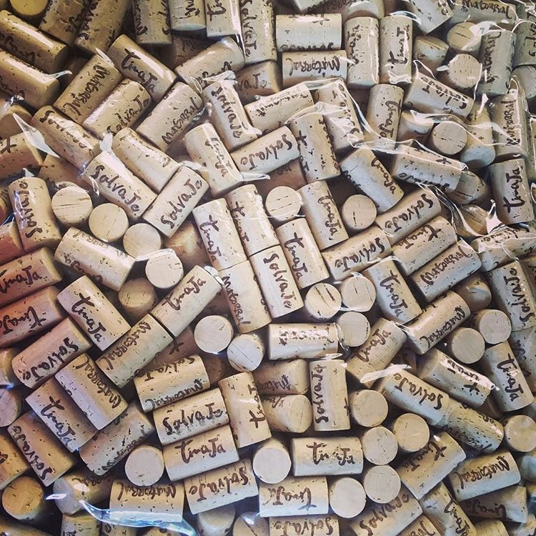 Dia de Embotellacion - vinosgonzalezbastias - ricardocarrascor | ello