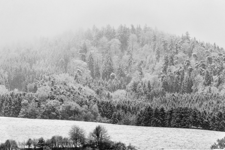 floatation frosty mist, crystal - christofkessemeier   ello