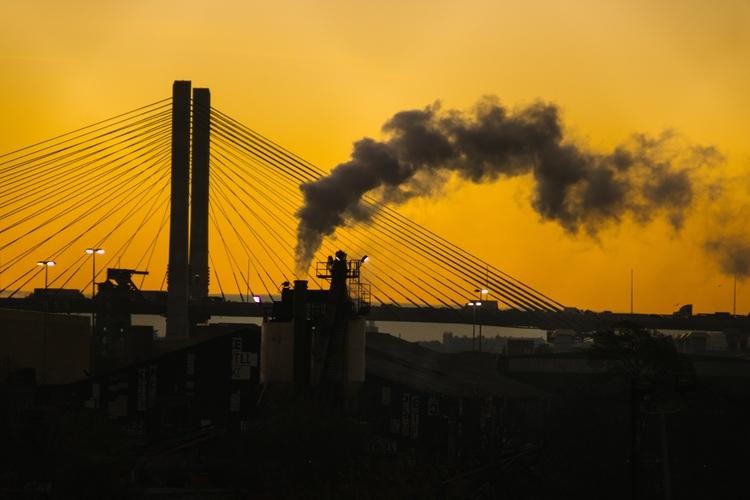 Morning light, Brooklyn - brooklyn - inatural | ello