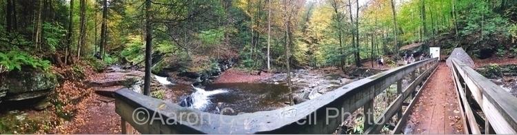 Falls Trail hike Tim Logan Devi - aaroncampbell | ello