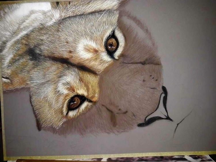 wip 50x70 Soft Pastel - draw, drawing - daniela_rum | ello