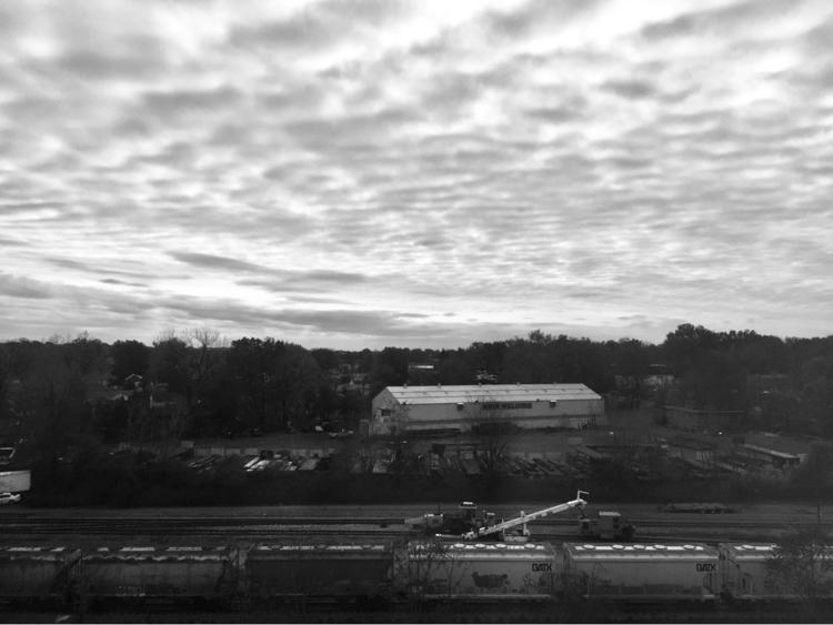 Jersey morning - wiant | ello