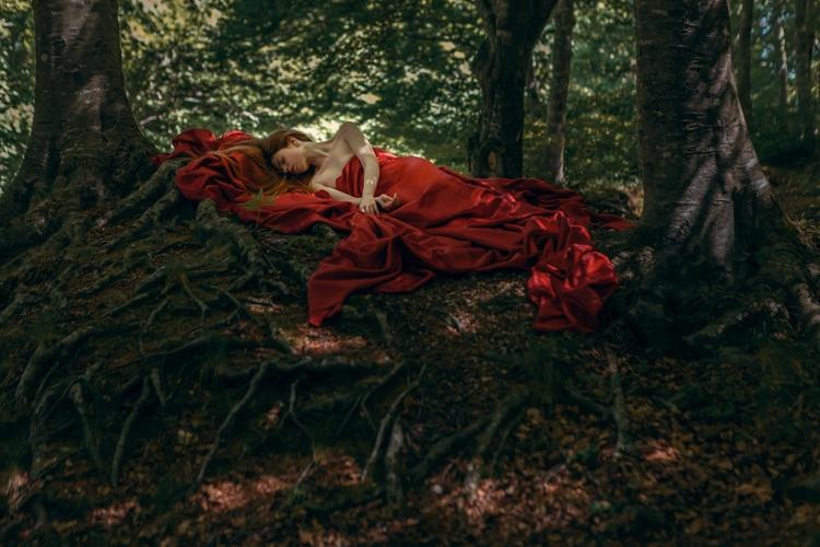 """Wood Memories"" series — Photog - darkbeautymag | ello"