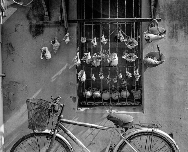 bike, shells, Taiwan - frankfosterphotography | ello