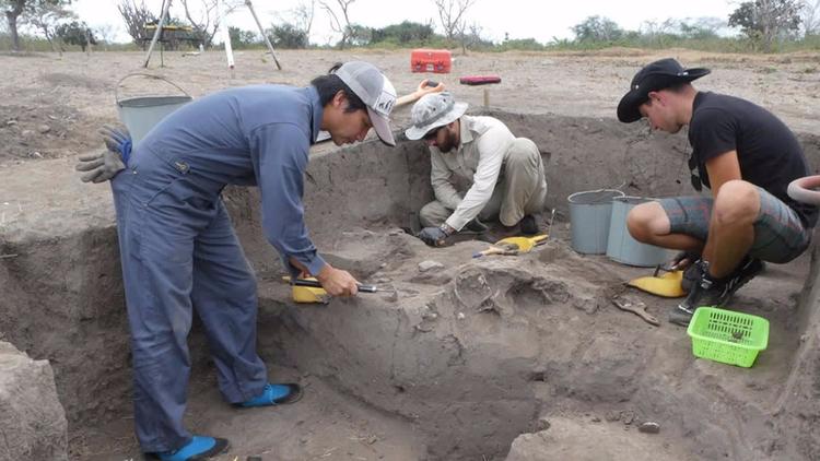 Hallan en Ecuador la cerámica p - codigooculto | ello