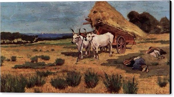 Pause Maremma Farmers Ox Cart 1 - pixbreak | ello