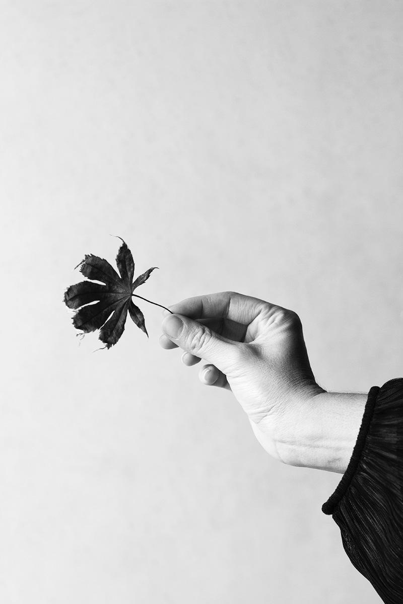 Autumn Beauty - robertagregorace | ello
