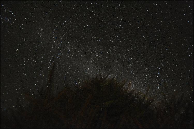 Star Bright - luxrevelry | ello