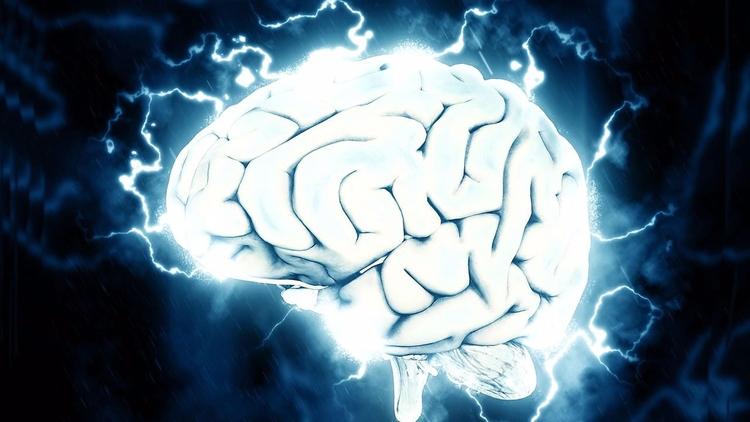 Investigación revela el cerebro - codigooculto   ello