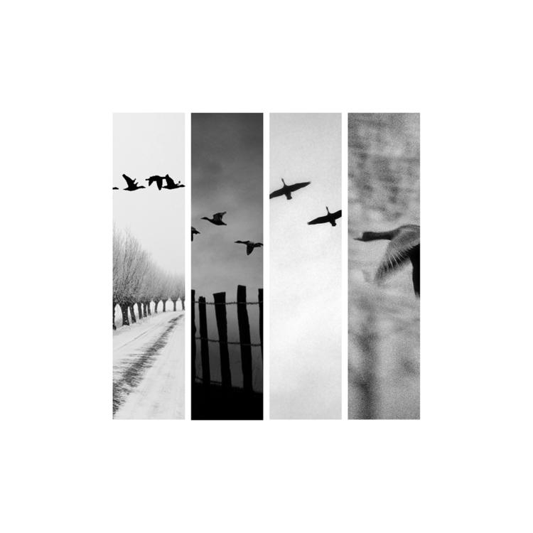 black-and-white-photography Post 06 Dec 2017 18:06:42 UTC | ello