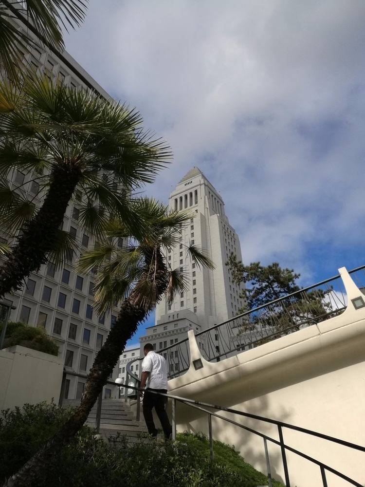 Los Angeles, California   2017 - sentient-simian   ello