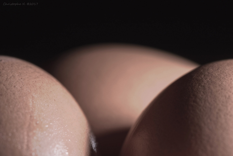 Eggs Story - looklike, egg, skin - christophen | ello