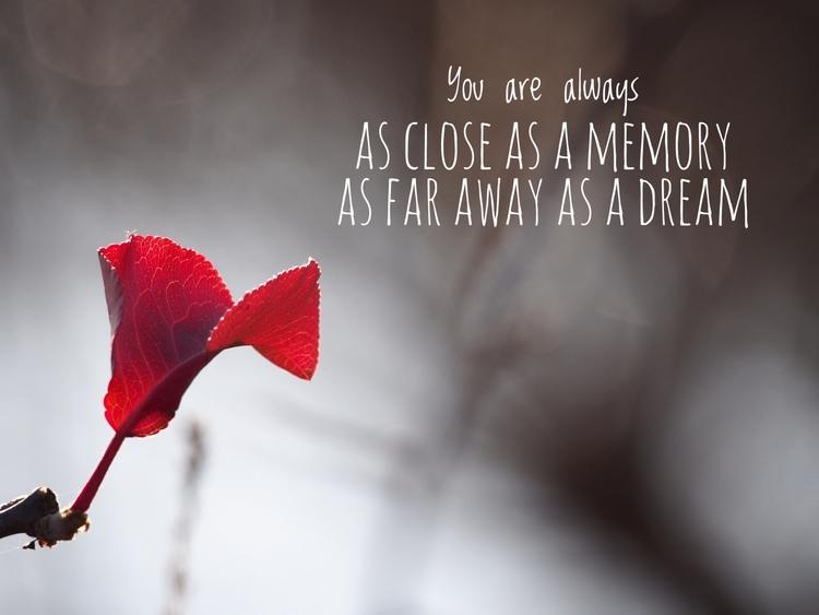 close MEMORY DREAM - bruceruns   ello