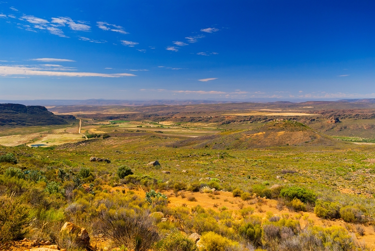 path country rooibos Mountain - SouthAfrica - christofkessemeier | ello