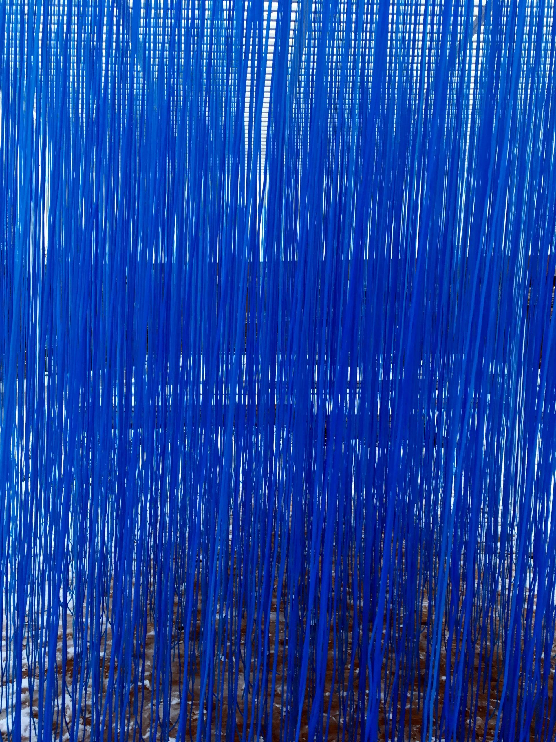 Zdjęcie przedstawia obraz widziany poprzez niebieskie pionowe linie.