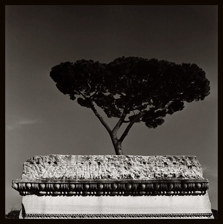 Italia - foto Augusto De Luca  - delucaaugusto | ello
