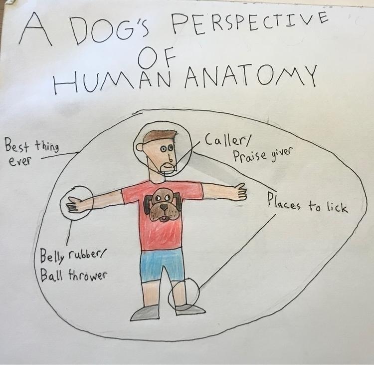 Perspective Human Anatomy - comic - homedrawncomics | ello