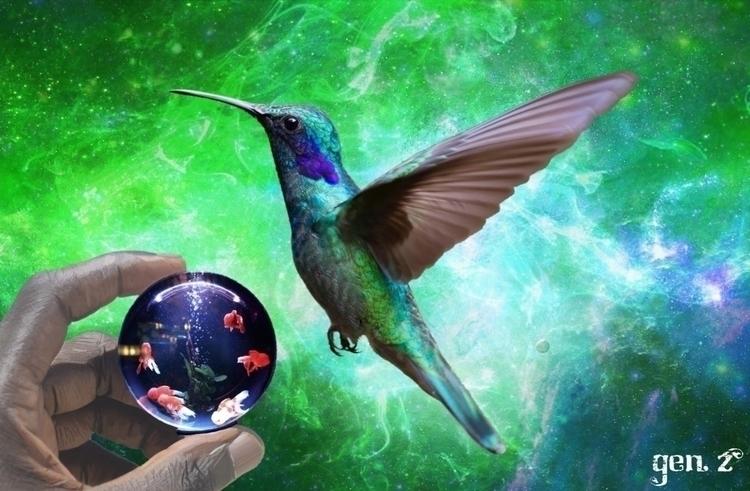 Colibri pisces. Link Shop - hummingbird - gen_z | ello