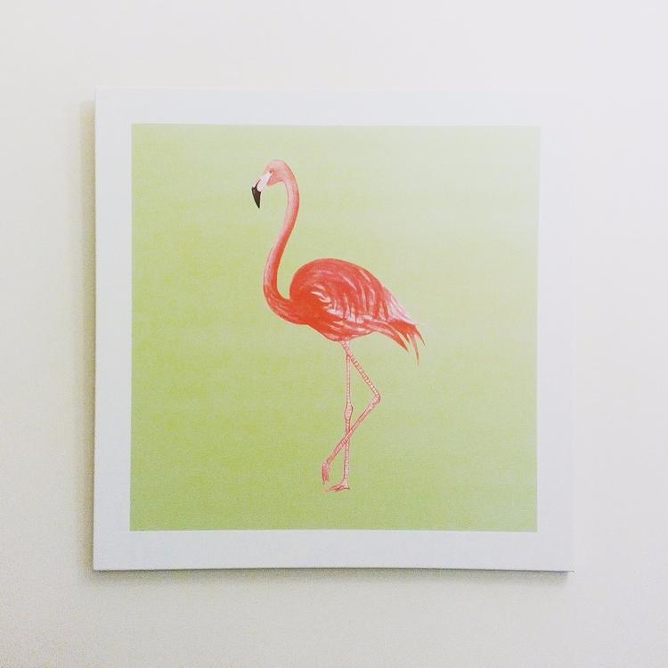 art series Summer Flamingo 65 c - pankunkat | ello