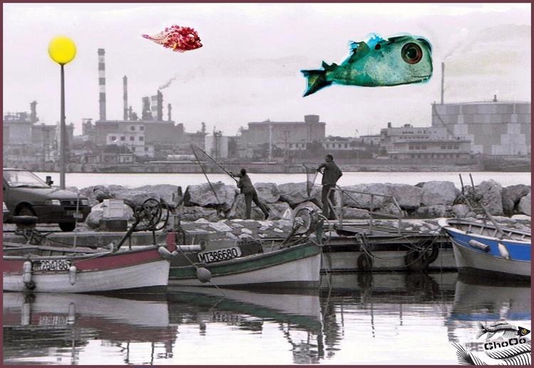 Eat Fish - choochooo | ello