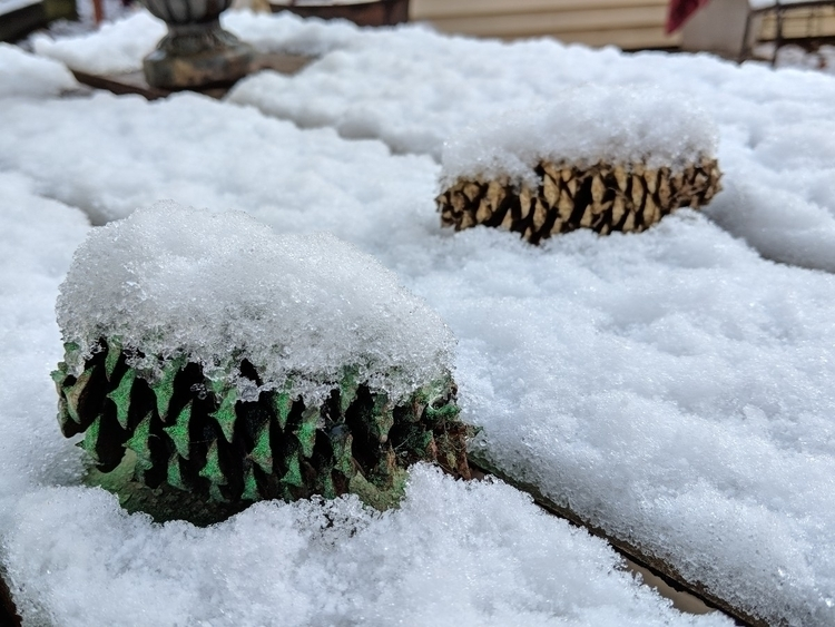 Snow covered Christmas pinecone - kscofield | ello