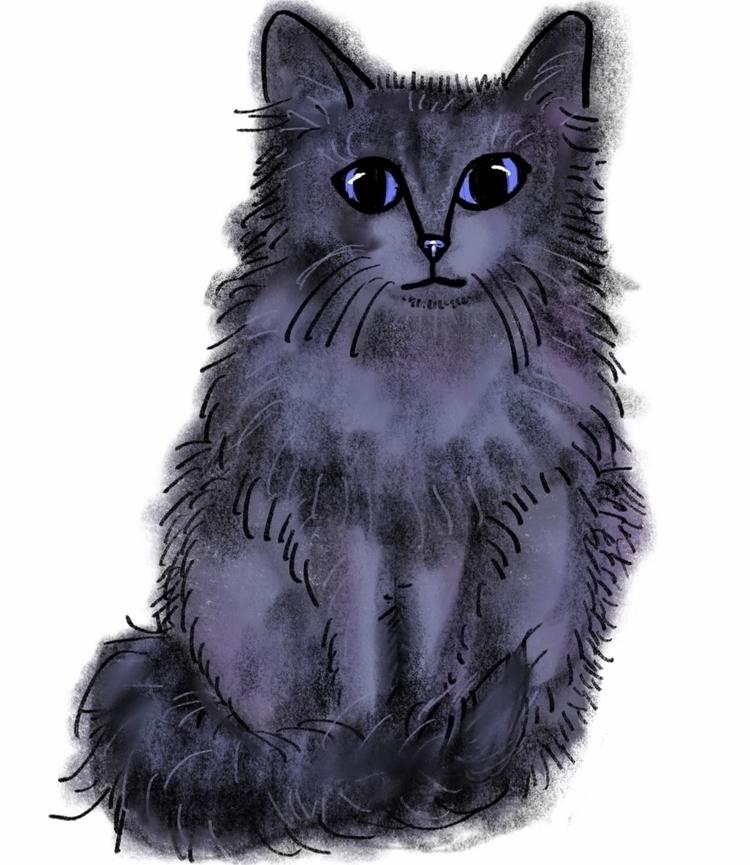 Fluffy kitty - sketch, art, ipadpro - reneeleigh | ello