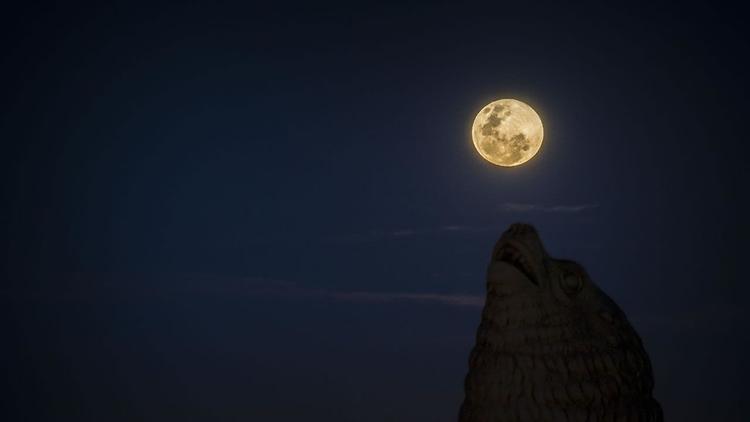 se pierda la superluna de año n - codigooculto | ello