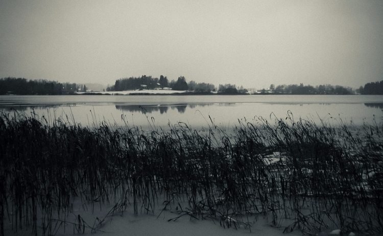 Wet winter eve - photography, landscape - anttitassberg | ello