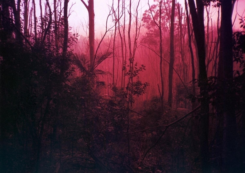 nominate photographer, John Bax - dropshot | ello