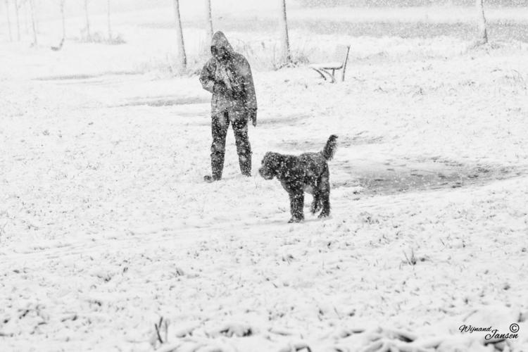 terrible snowman dog - artmen | ello