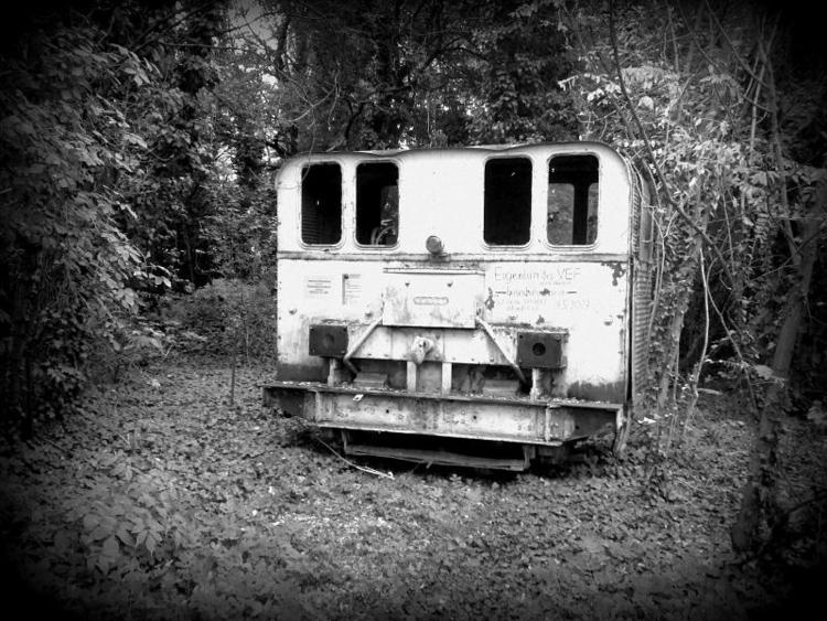 Locomotive Woods gesehen Wien F - fkopr | ello