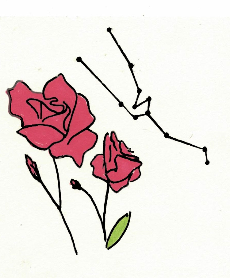Taurus apparel prints - art, illustration - alexsappy   ello