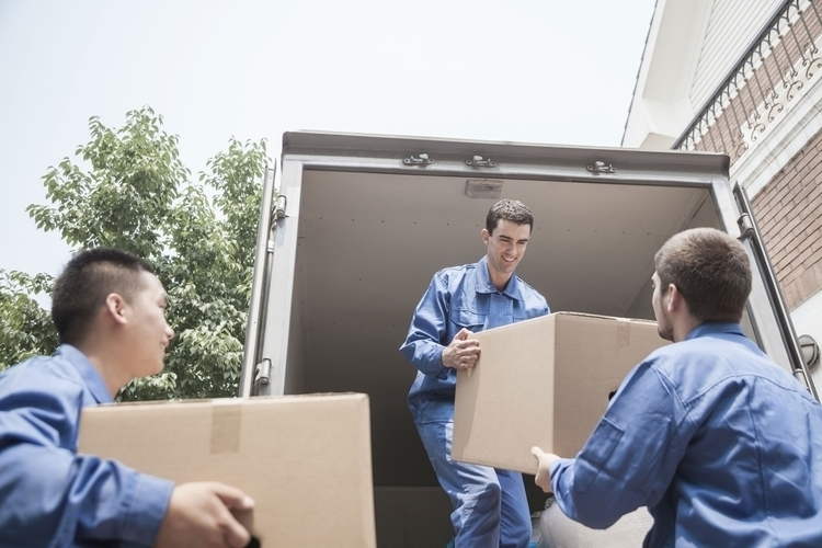 Contact Pro Movers DC touch mov - promoversdc | ello