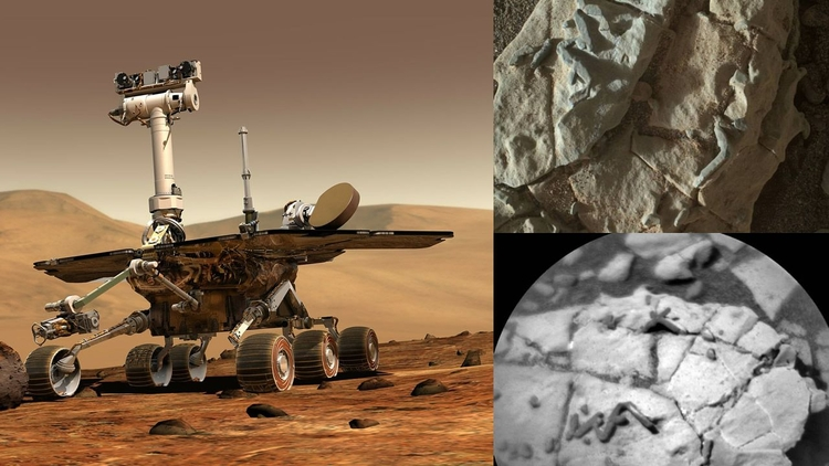 Hallan posibles fósiles en Mart - codigooculto | ello