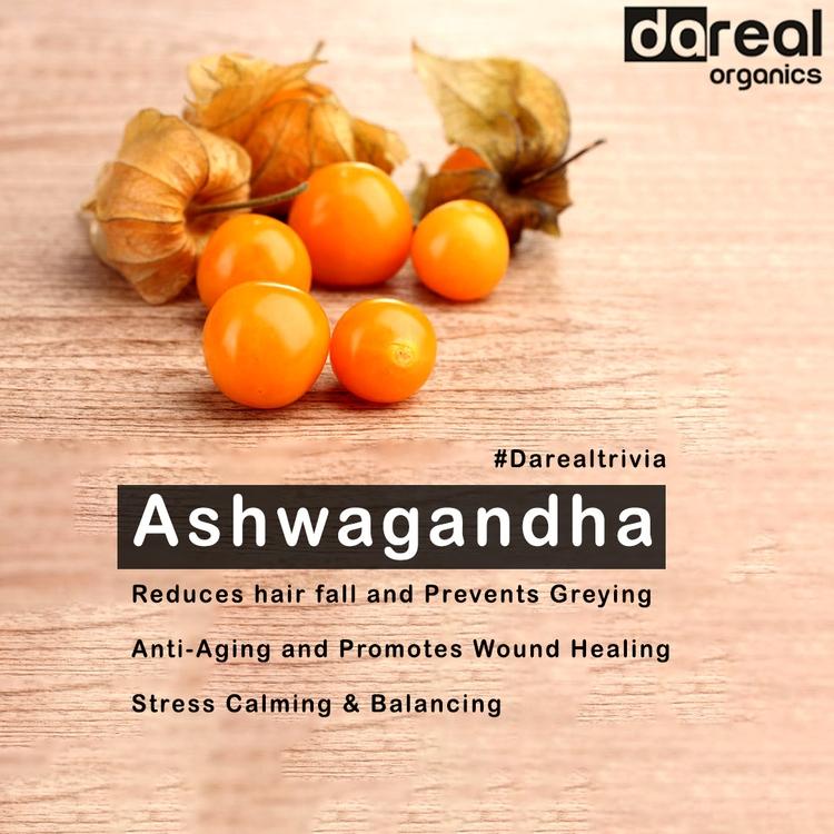 Ashwagandha, magical herb - darealorganics   ello