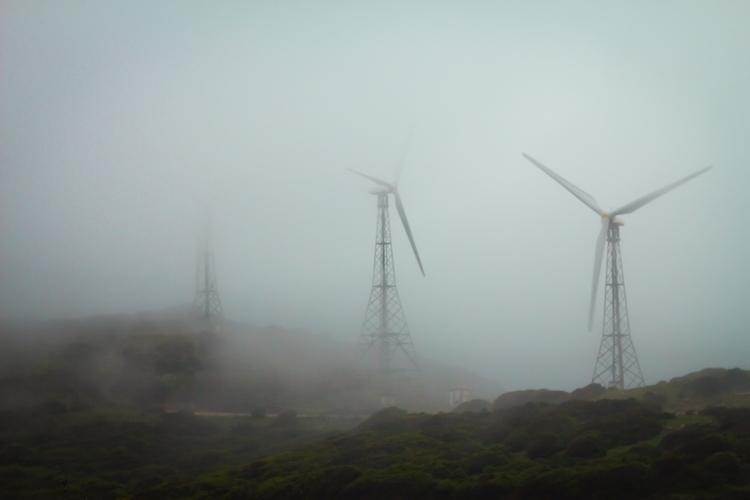 happen - submission, photo, wind - alexesteve | ello
