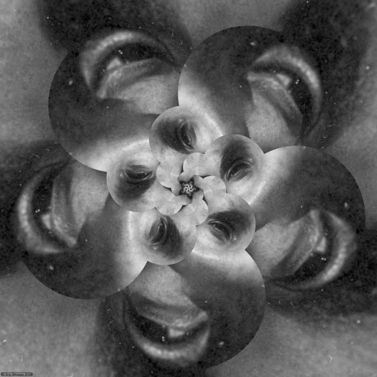 Eyeflower XIV (2018). Spiral ét - retrocollage   ello