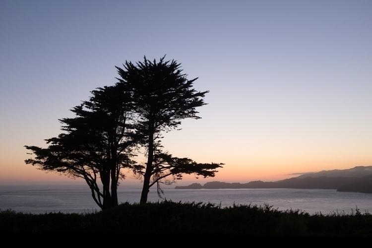 Golden Gate, San Francisco, Poi - willtoft   ello