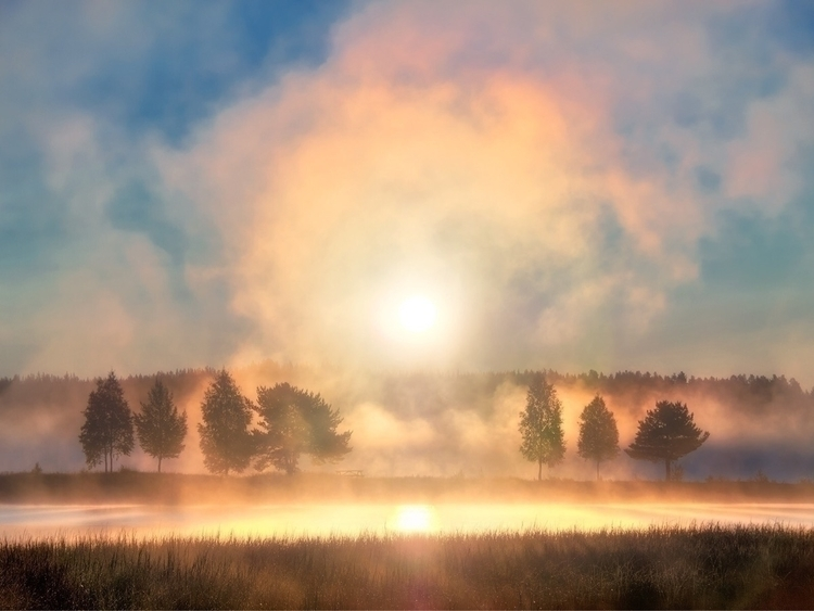Misty morning Dalarna, Sweden | - sodercrantz | ello