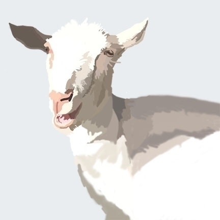 Baae - Adobe Photoshop Illustra - hipsterhack   ello