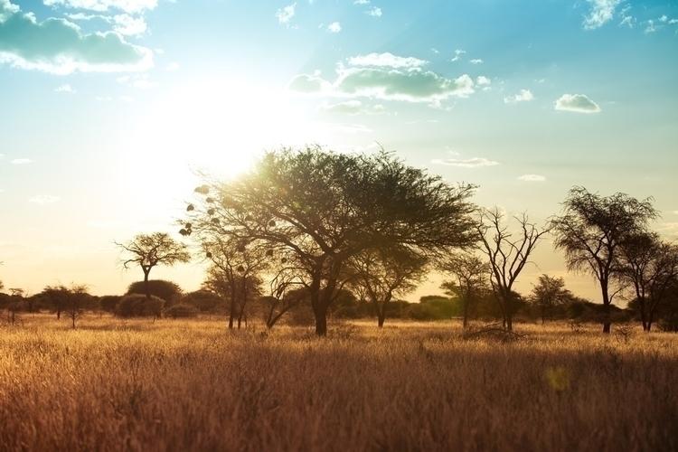 story Namibia! pics amazing spe - chrislemmer | ello