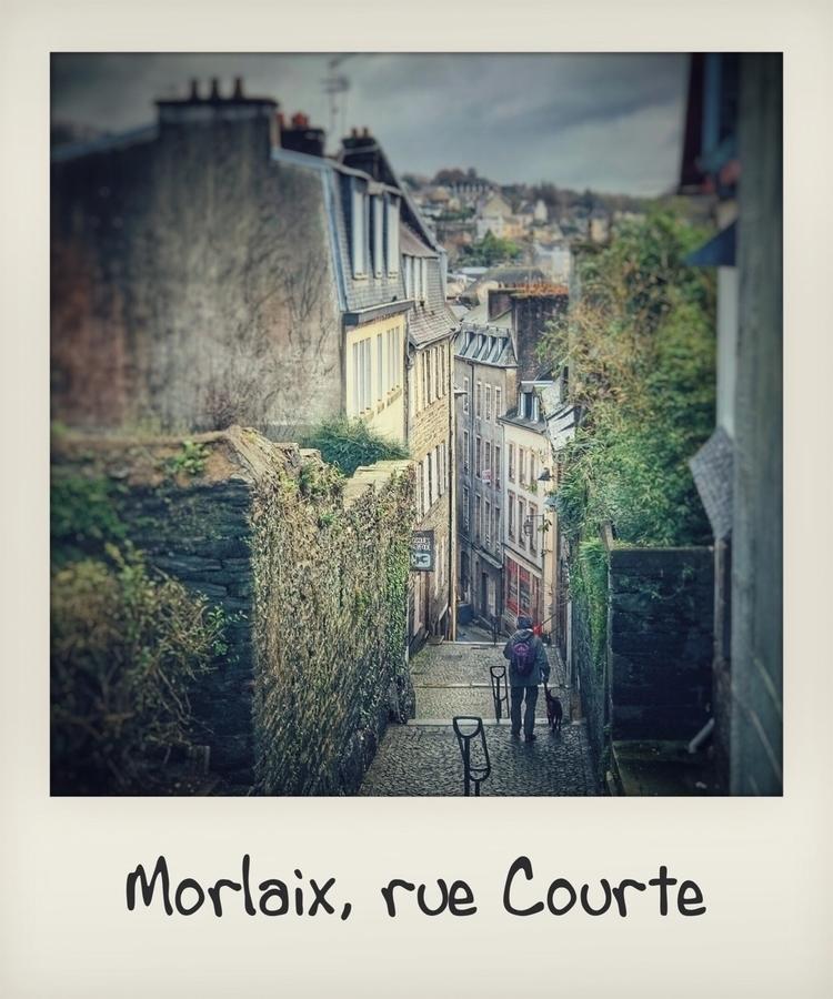 France, Bretagne, Finistère, Mo - odeyus | ello