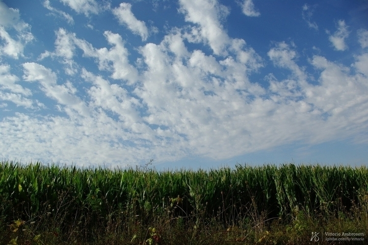 Field clouds - photography, sky - azonic | ello